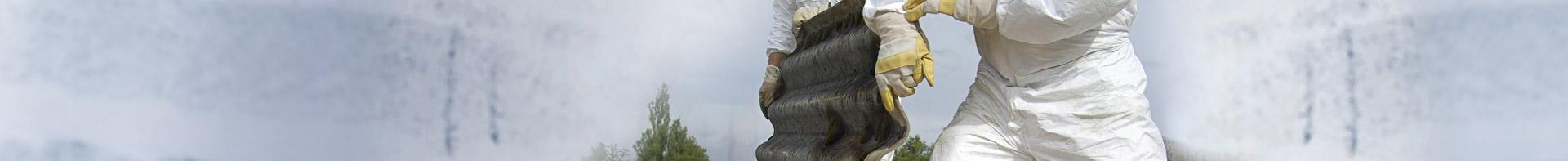 inventaire amiante asbestos. Black Bedroom Furniture Sets. Home Design Ideas